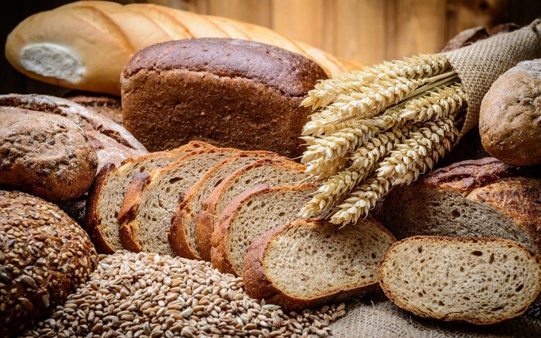 Dicas para escolher pão | Nutricionista Ana Isabel Monteiro