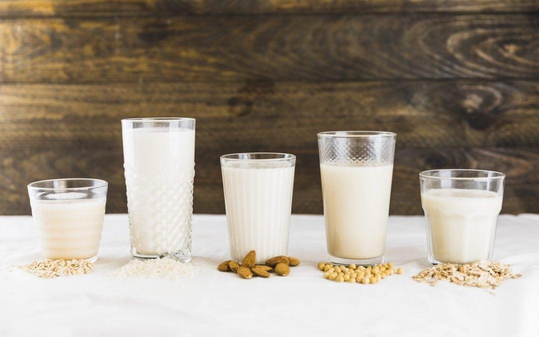 Bebidas vegetais – como escolher? | Nutricionista Ana Isabel Monteiro